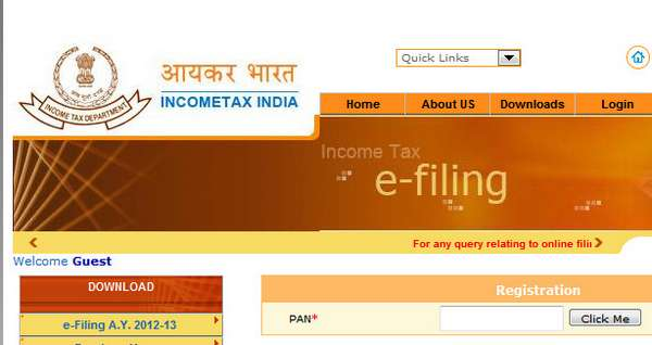 Online registration of PAN for filing income tax return online
