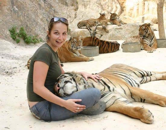tiger temple in thailand,Wat Pha Luang Ta Bua,Buddhist temple,Western Thailand,Saiyok district of Thailand