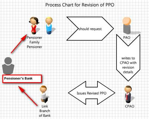 PPO revision process and CPAO's initiatives